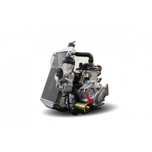 MOTEUR ROTAX 125 MAX RACING